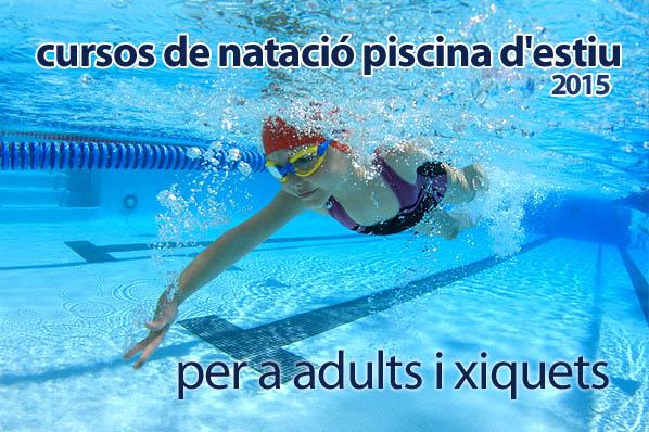 Portal de l 39 olleria cursos de nataci n piscina de verano - Curso mantenimiento de piscinas ...